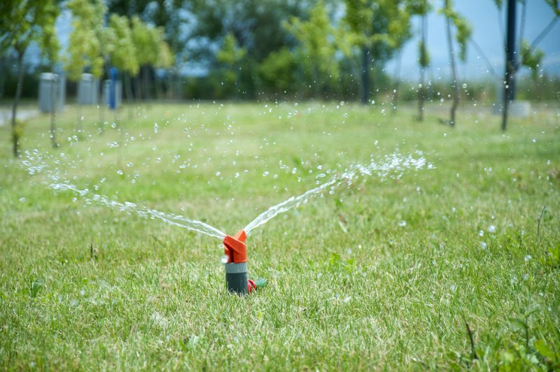 Lawn Care Blog Sea Of Green Lawn Services